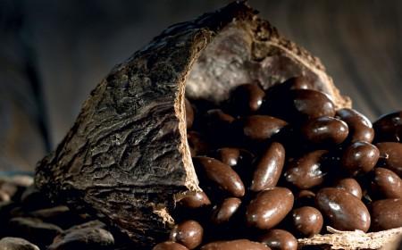 Roasted almonds with sea salt and milky dark chocolate