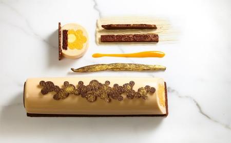 Apricot xmas yule log