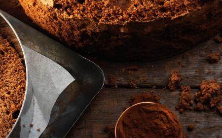 Sugar free cocoa sponge