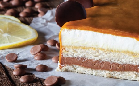 Lime-milk chocolate entremets