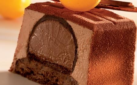 Triple chocolate yule log