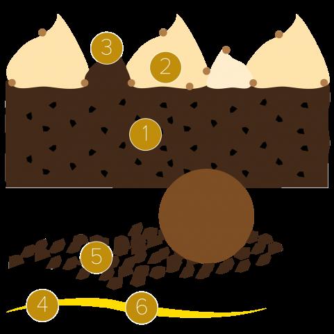 Brownie, potiron et vanille