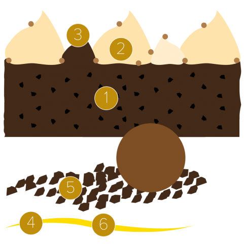 Brownie, pumpkin and vanilla
