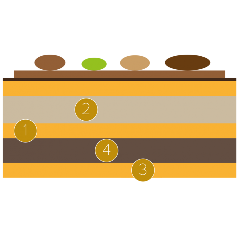 Opera cake with pecans