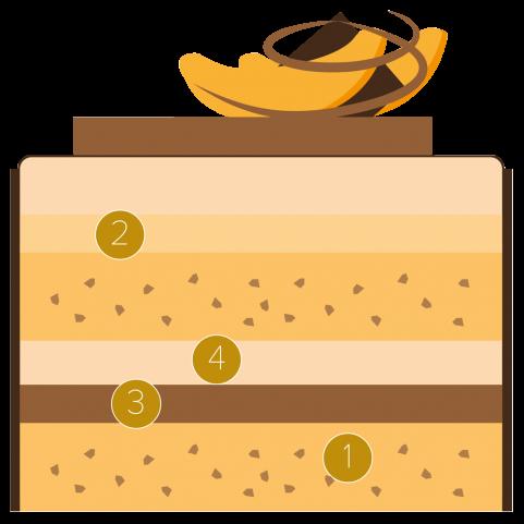 Apricot and dark chocolate cake