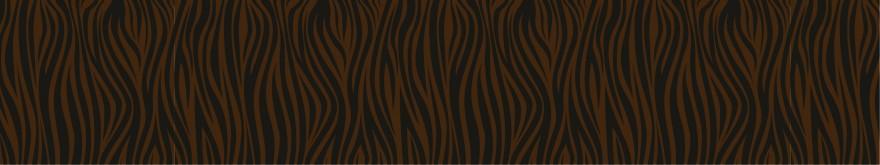 Zebra Stripes - Transfer Sheets - 30 pcs