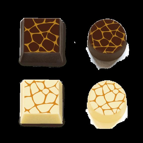 Giraffe - Transfer Sheets - 30 pcs