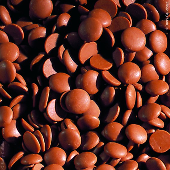 34% Milk Chocolate Couverture Coins