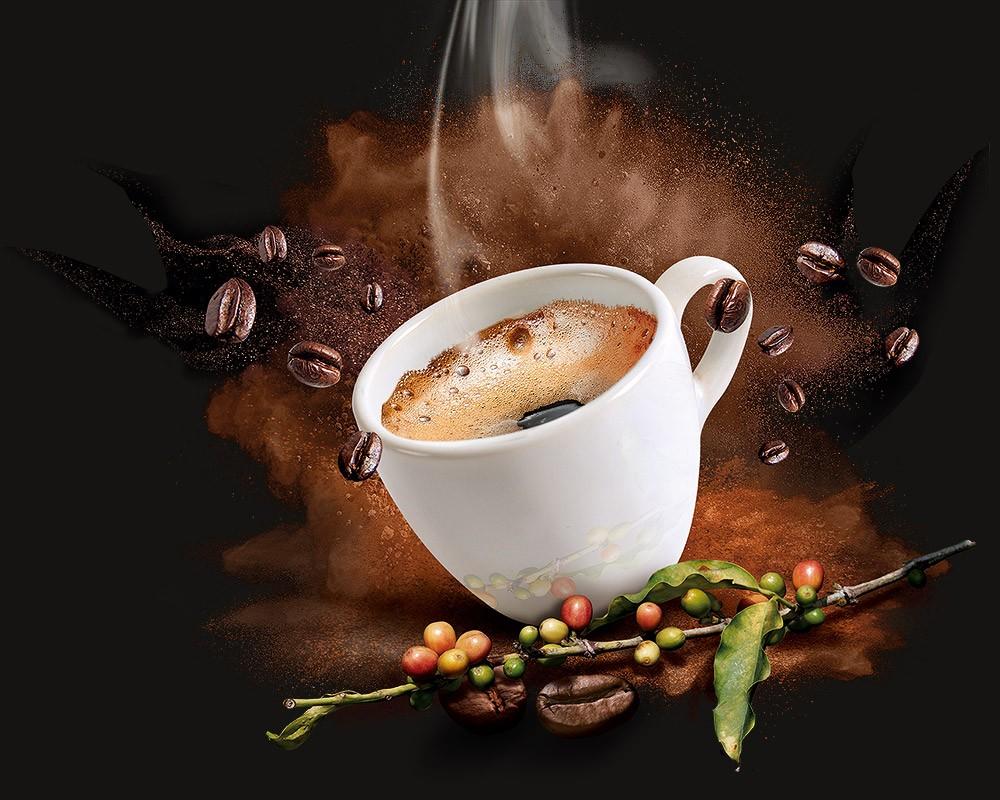 Caprimo Organic Coffee